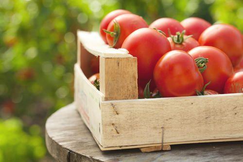 Comment Conserver Les Tomates Dans Des Pots Masson Et Les
