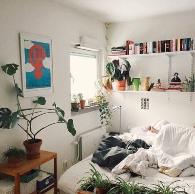 Pin On Queer Dorm Ideas