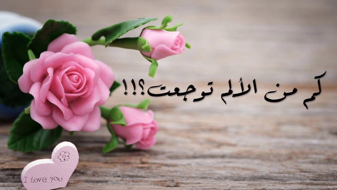 قصيدة انتظرت Flowers Rose Advertising