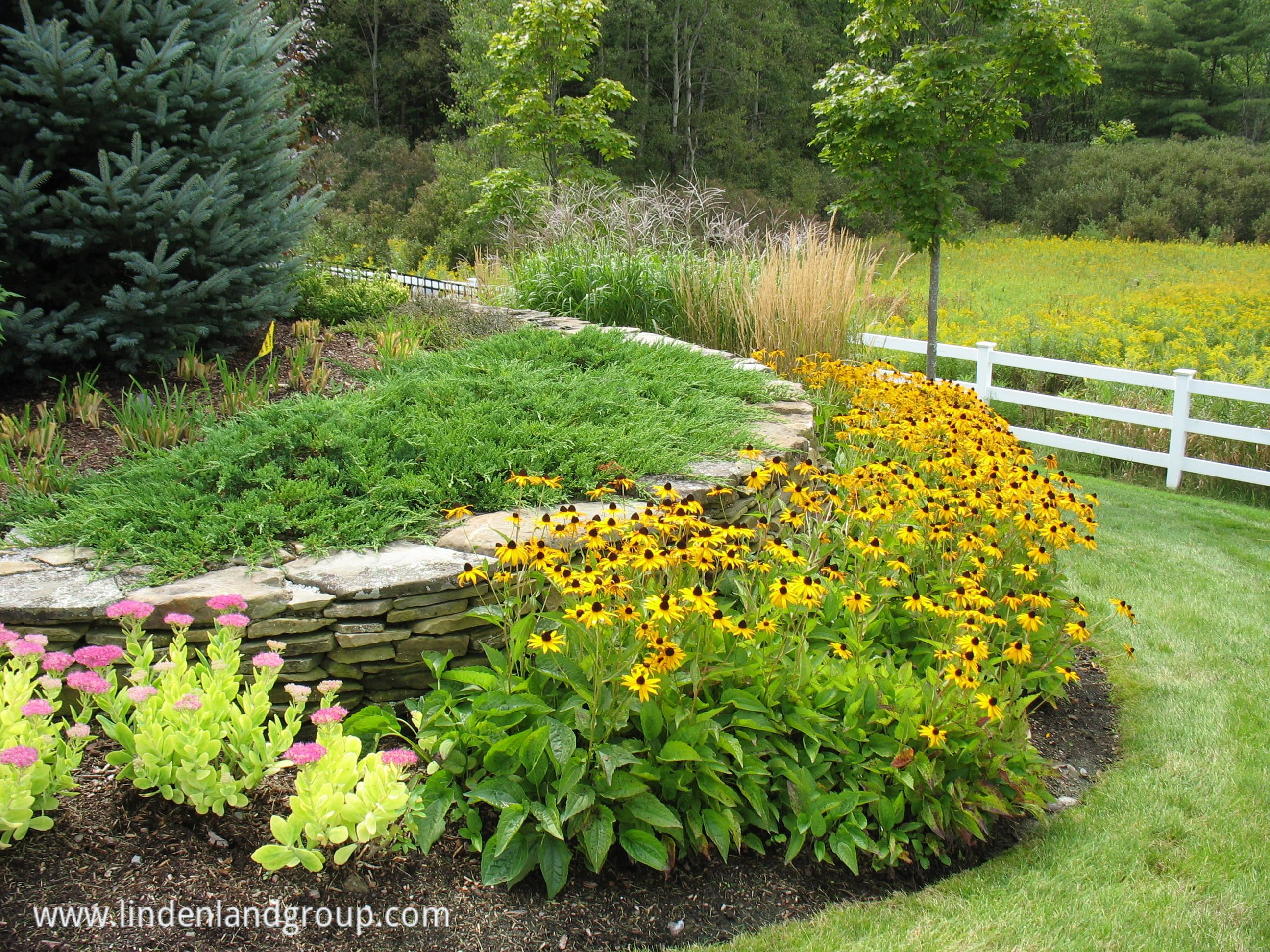 Sustainable Landscape Contractor Serving Burlington Vt Area Organic Native Plants Stone Full Sun Garden Small Garden Ideas Full Sun Small Gardens