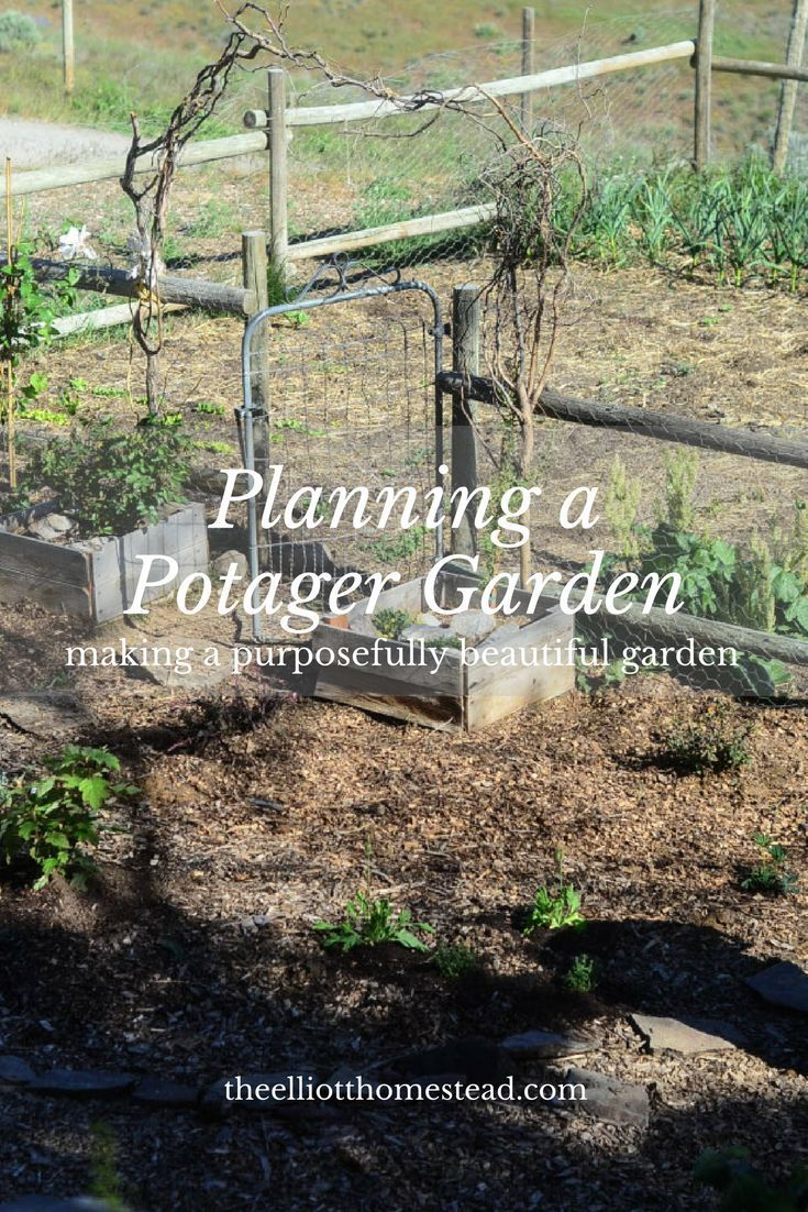 Planning A Potager Garden  The Elliott Homestead is part of Potager garden - I'm sorry Joel Salatin, but I've gotta disagree with you on one very, important point  the aesthetics of the farm DO MATTER  Welcome to the potager