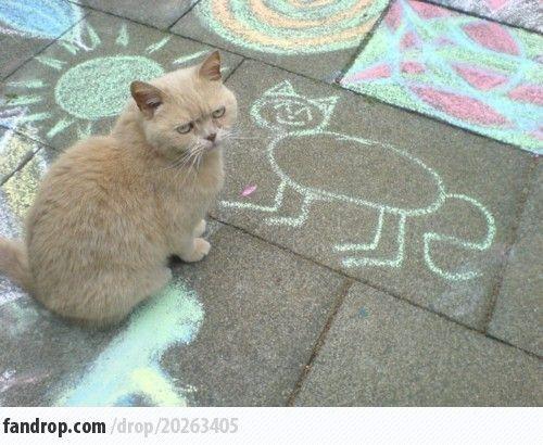 I Have a Strange Cat Problem - Fandrop