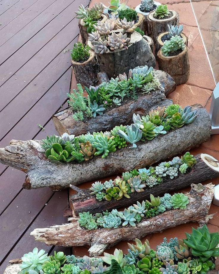TatilAsistani.com 60 erstaunliche DIY Succulents Garden Decor Ideas - Garten Dekoration garten