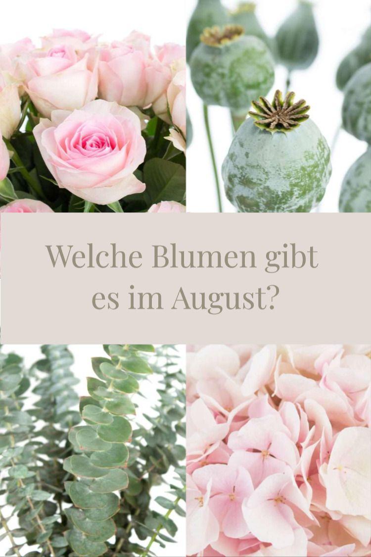 Welche Blumen Gibt Es Im August Schnittblumen Saison Kalender Blumen August Hochzeit Saison Blumen August Blumen