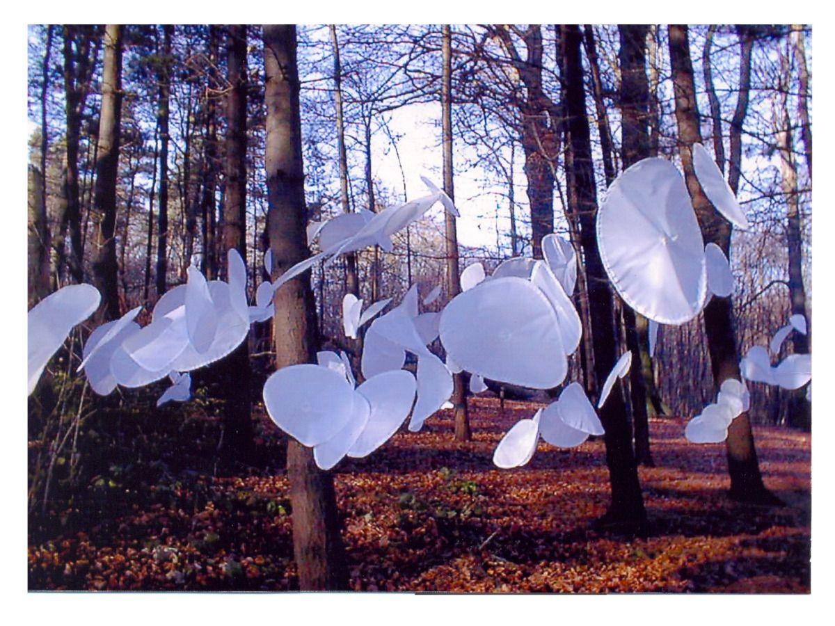 Margarita Sampson - Petalfall - Sculpture by the sea 1997-2011