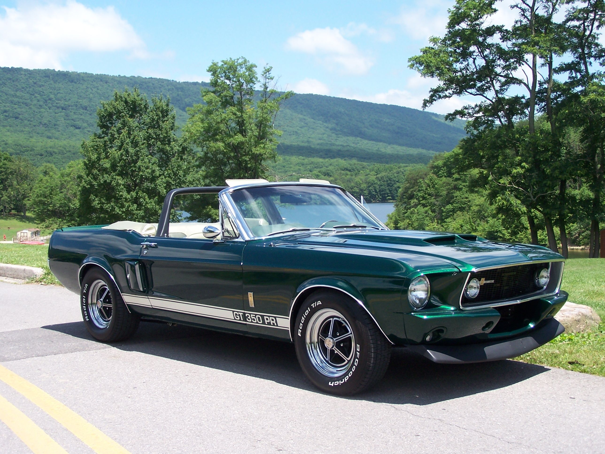 1967 Ford Mustang Shelby Gt350 Clone For Sale All Collector Cars
