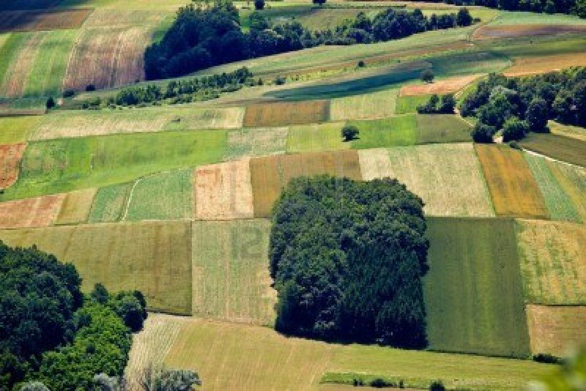 http://us.123rf.com/400wm/400/400/xbrchx/xbrchx1207/xbrchx120700023/14548479-green-field-layers-aerial-view-in-spring.jpg