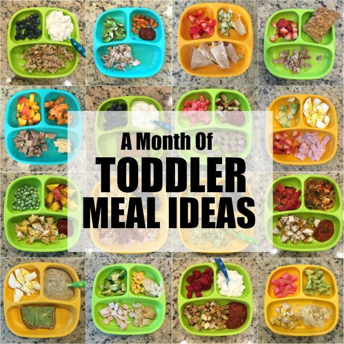 Easy toddler meal ideas - august images