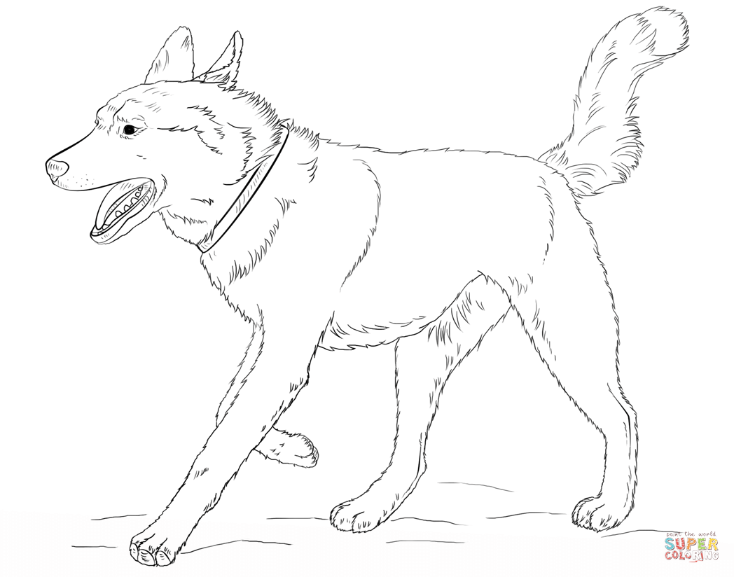 34+ Printable realistic puppy coloring pages information