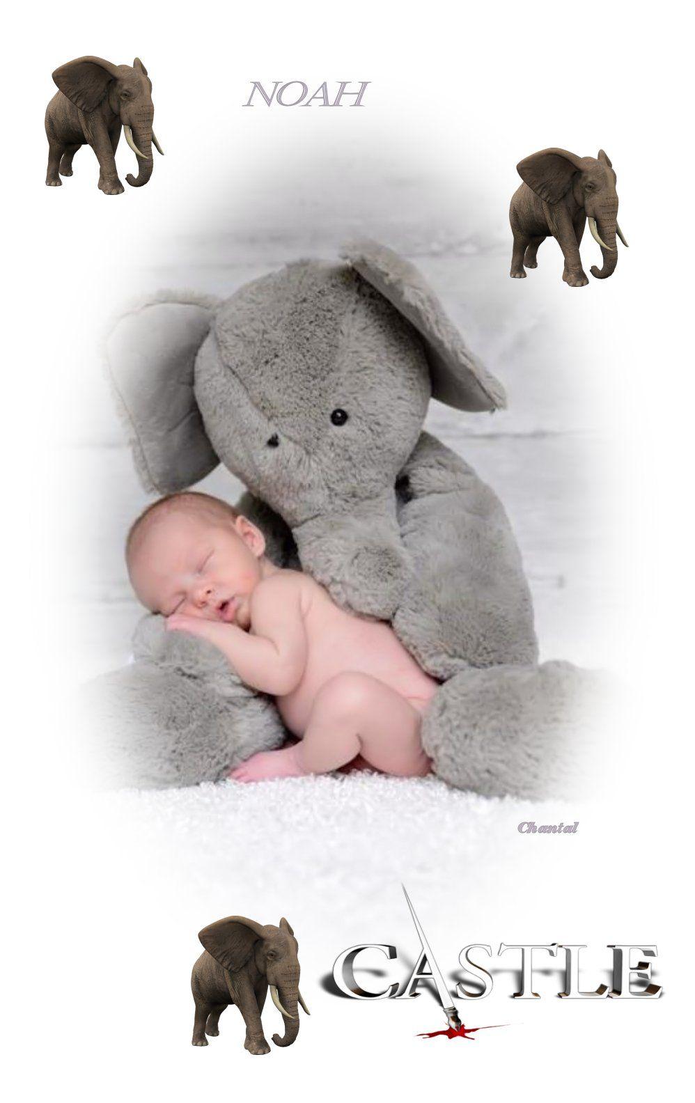 Castle Caskett Baby Elephant Baby Photo Baby