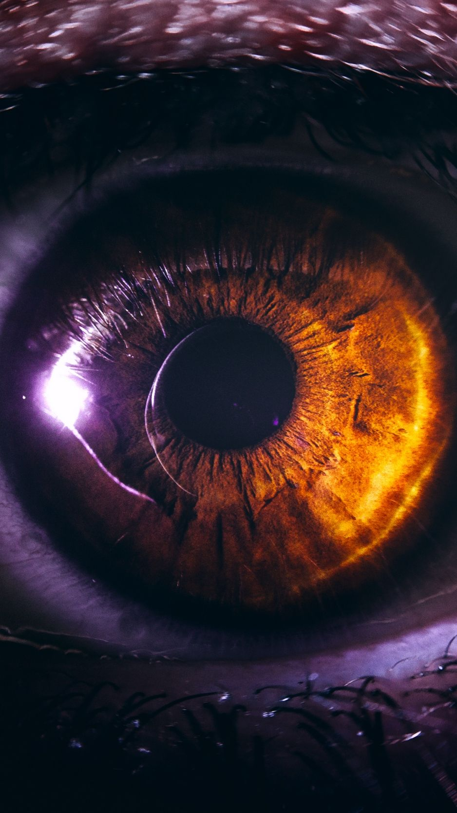 Eye, pupil, close-up, brown background – Cool Backgrounds