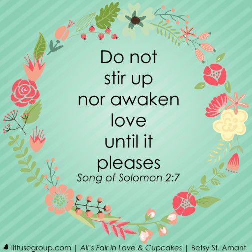 Song of Soloman - Do not stir up nor awaken love until it