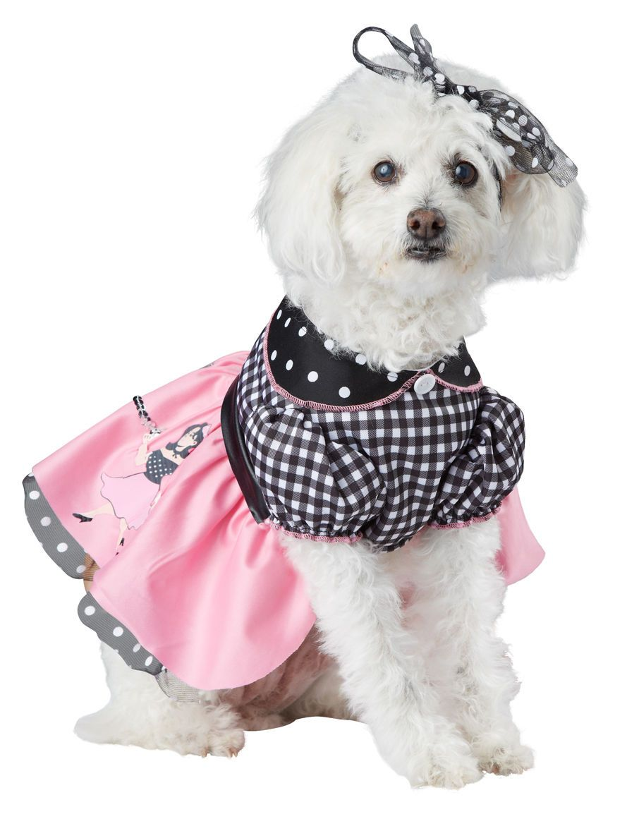 14 9 50s Poodle Skirt Pooch Dog Pet Costume Ebay Home