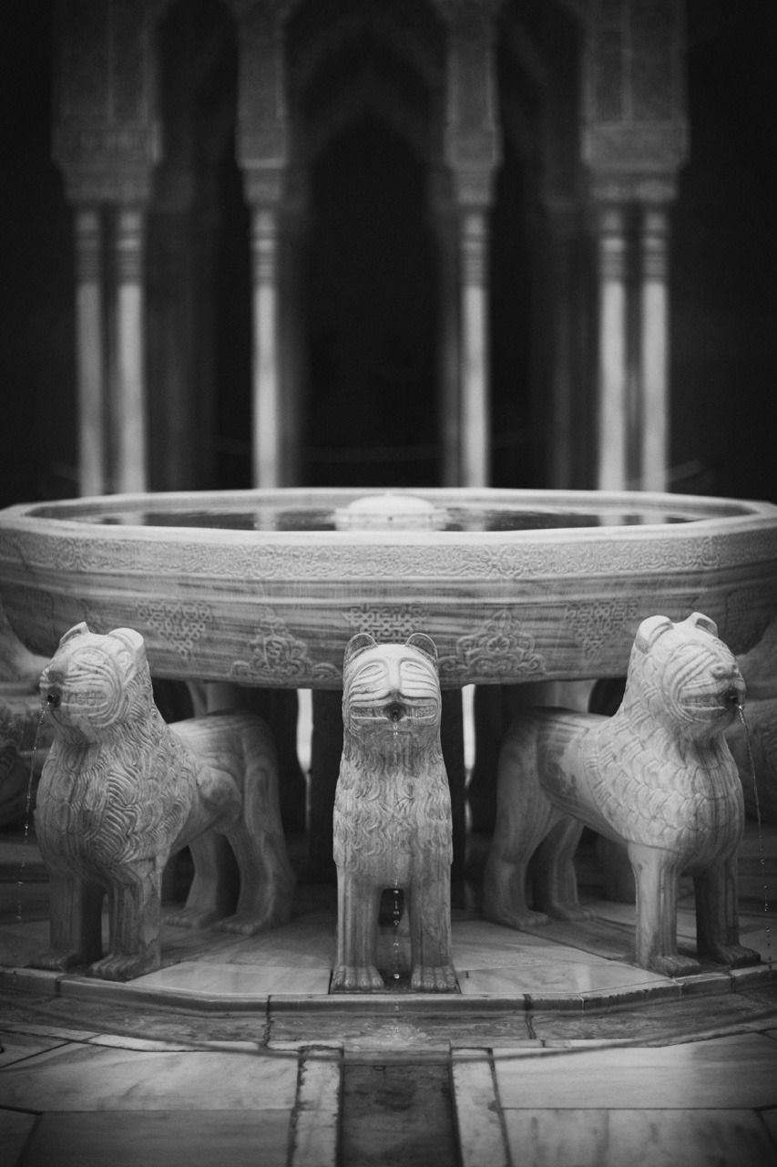 Carrying the fountain - #alhambra #and #black #de #granada #leones #los #meolog #on #patio #photographers #source: #tumblr #white