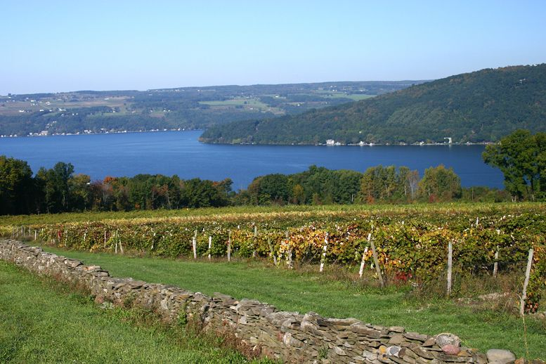 Image result for finger lakes region of new york