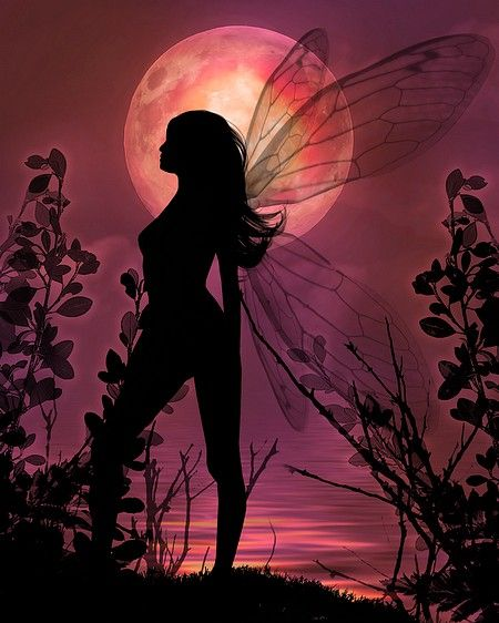 I love the beautiful silhouette with the full blood moon in the background. It's a little similar like my book cover. Eve The Soul Reaper.