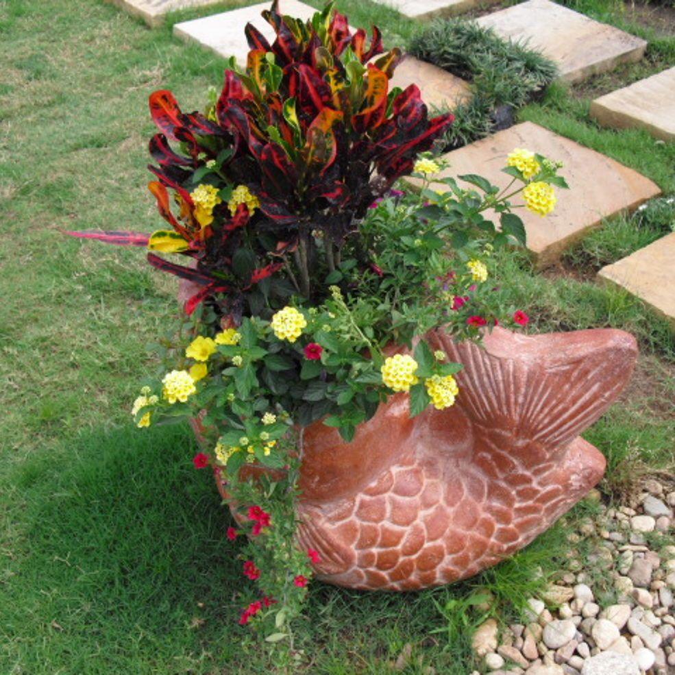 A succulent pot and a tropical pot that i did for summer