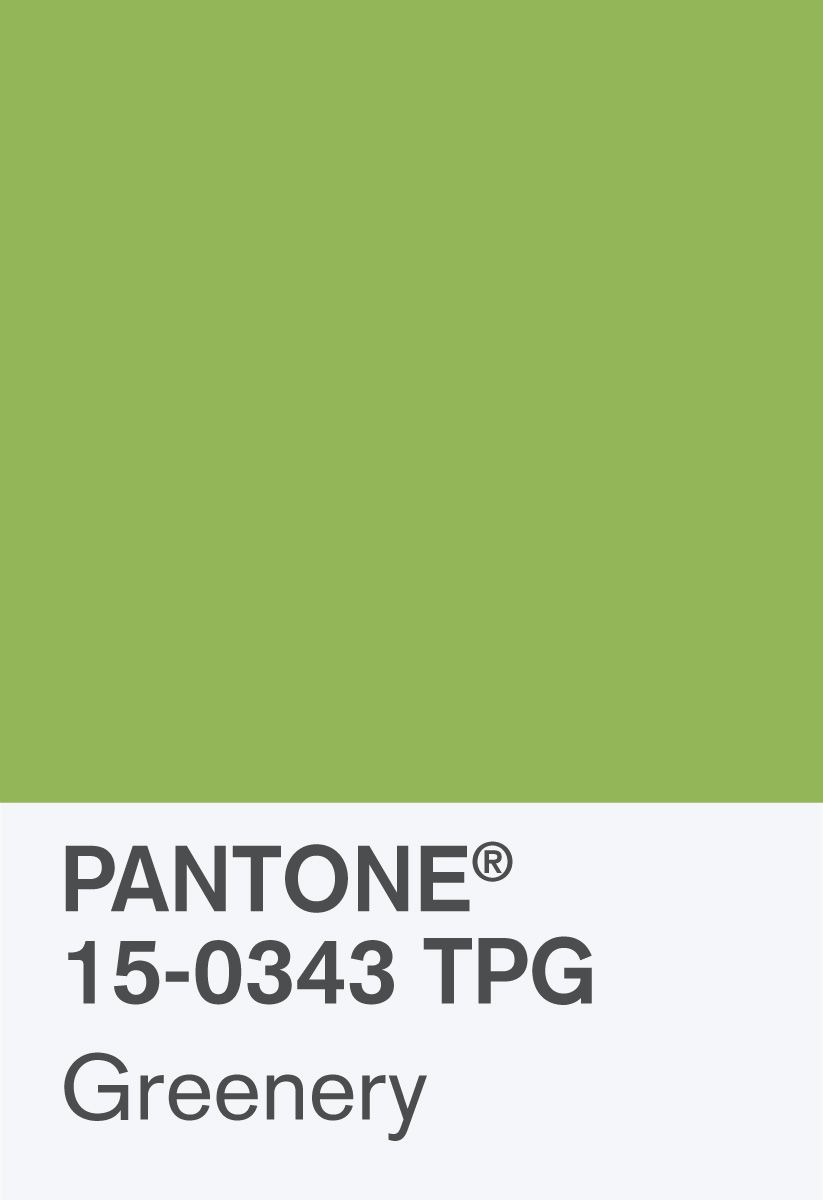 Pantone s colour of the year 2017 greenery in kids rooms - Pantone Color Of The Year 2017 Pantone 15 0343 Greenery Chip