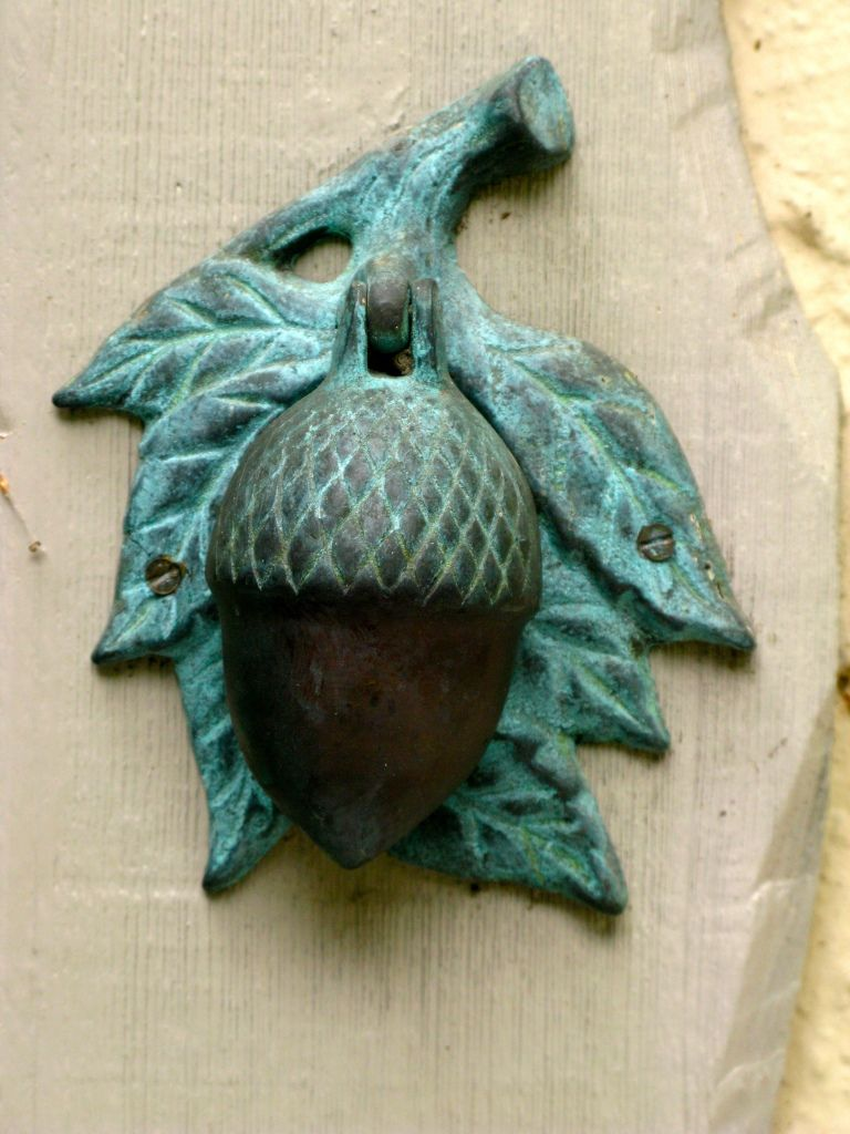 Acorn Door Knocker....I have this on my front door. : acorn doors - Pezcame.Com