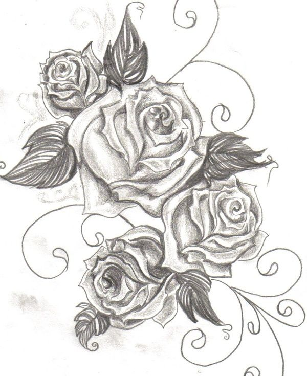 Best Sketch I Ve Seen For A Rose Tattoo Soft Lines But Not Cartoonish Just Enough Detail And Right Size Swirl Tattoo Tattoos Rose Tattoos