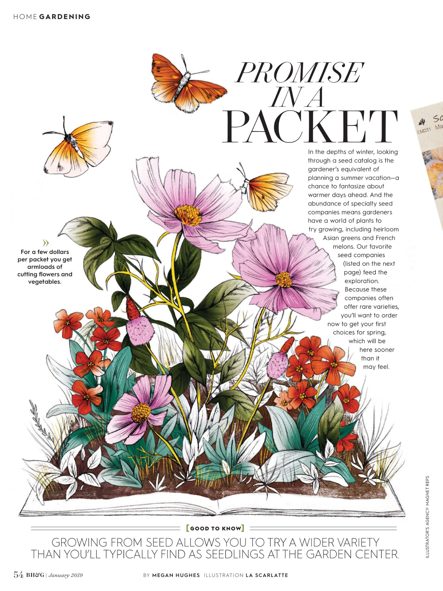"""""""Promise in a Packet"""" from Better Homes and Gardens"""