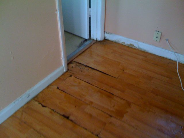 Unique Fix Water Damaged Wood Floor Images Best Home Decorating