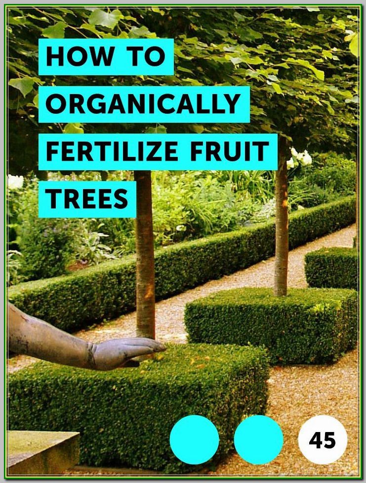 How To Make Your Organic Garden Grow Tips And Tricks Organic Soil Fruit Trees Plant Diseases