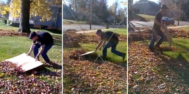 How To Get Rid Of Leaves In Your Yard