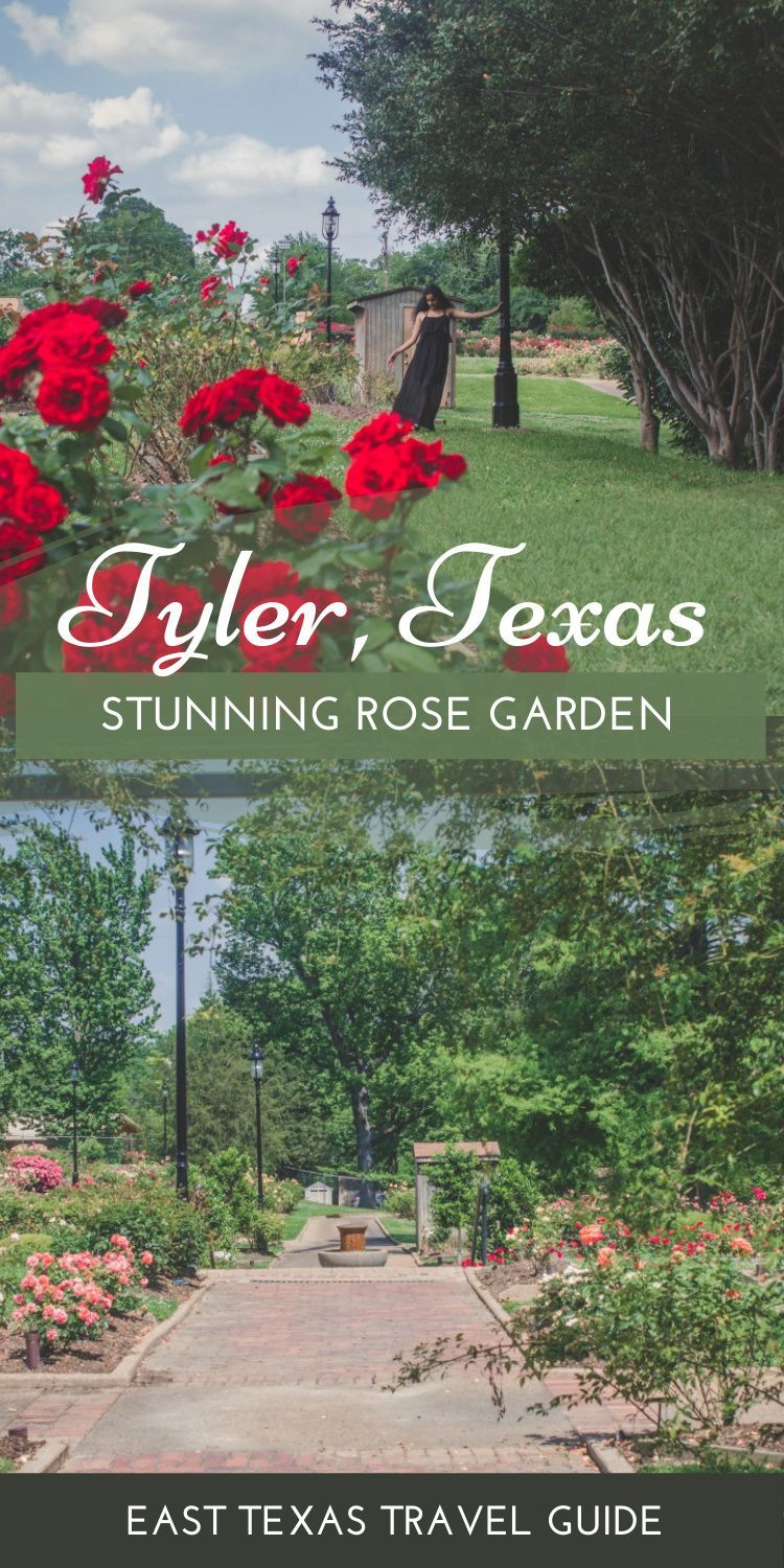 A Guide To Visiting The Tyler Rose Garden Passport To Eden Texas Travel Guide Best Beaches In Texas Texas Travel