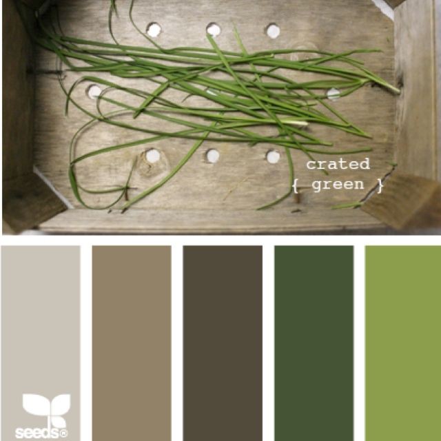 Love these muted earth toned | Design seeds, Green color ...