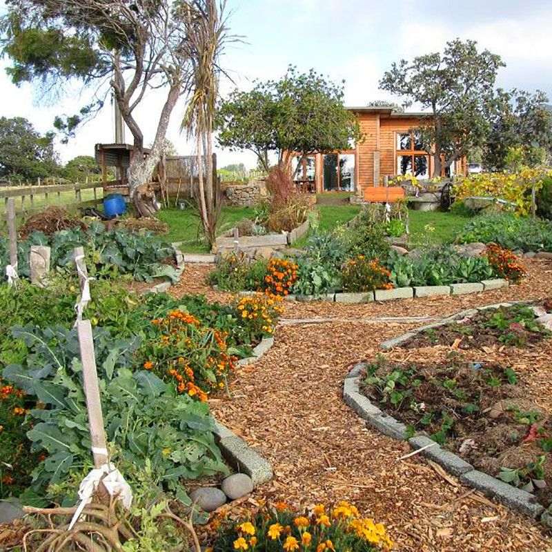 Permaculture Garden Is A Method Of Gardening That Seeks To Establish A  Balance With Nature. This Self Sustaining Garden Provides Numerous Benefits.
