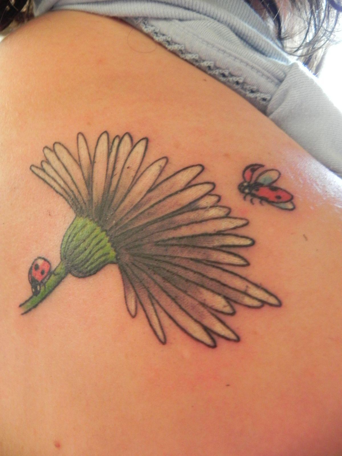 Ladybugs And Daisy Body Art Tattoo Platsburgh Ny Burlington Vt Body Art Tattoos Lady Bug Tattoo