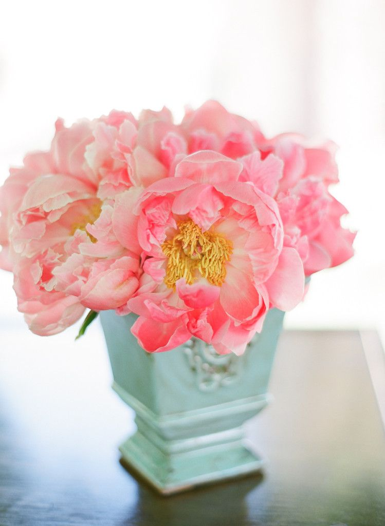 turquoise vase with coral charm peonies - bright and beautiful!