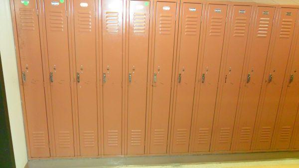 Steel Lockers 5 foot and 6 foot   Steel locker, Lockers ...
