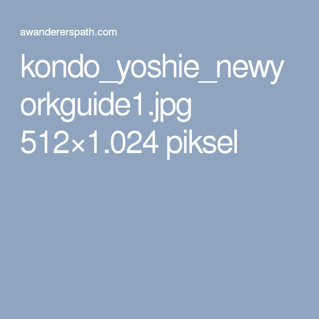 kondo_yoshie_newyorkguide1.jpg 512×1.024 piksel