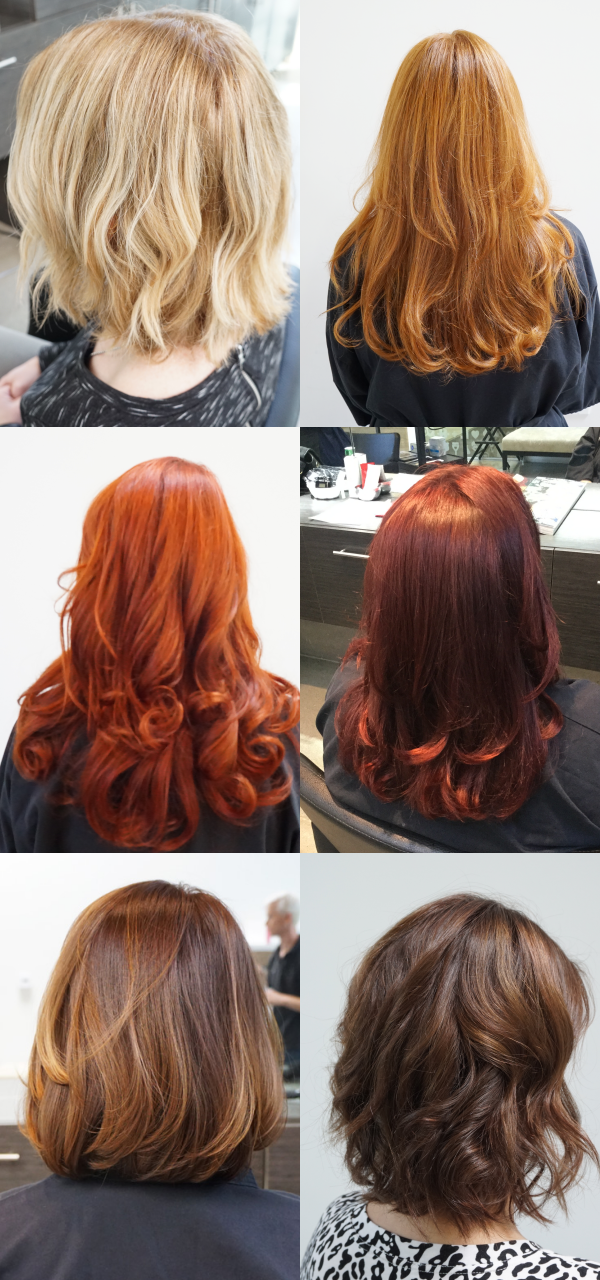 Never Worry About Pesky Grays Again Get Vibrant Long Lasting Hair