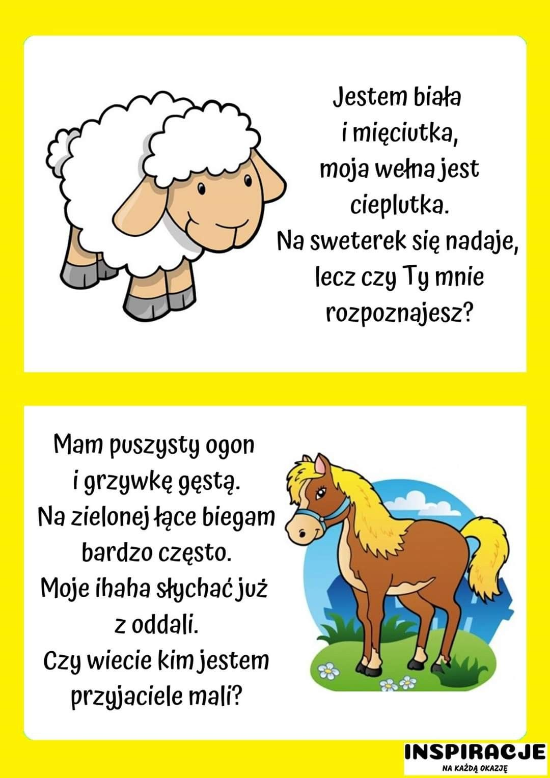 Pin By Dagmara Malinowska On Zagadki In 2020 Videos Funny Activities For Kids Kids