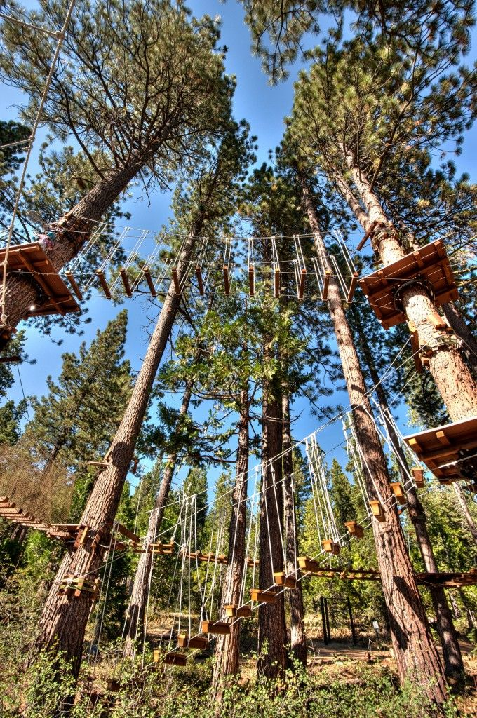 Tahoe Treetop Adventure Park Ropes Course Tahoe I Wanna