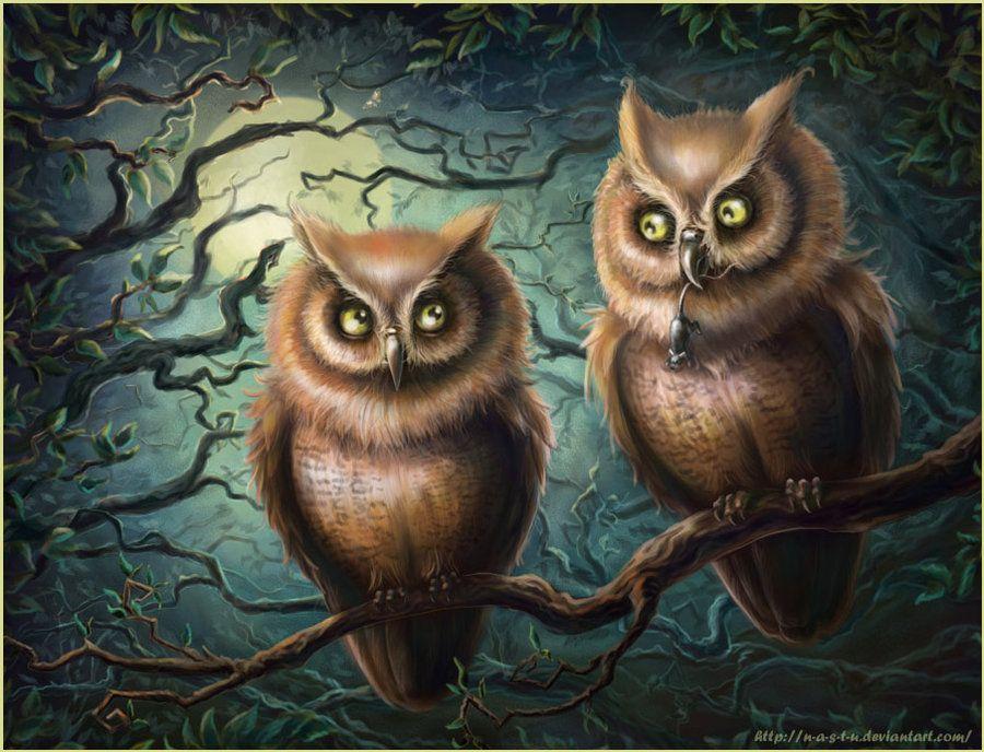 картинки две совы на дереве них так