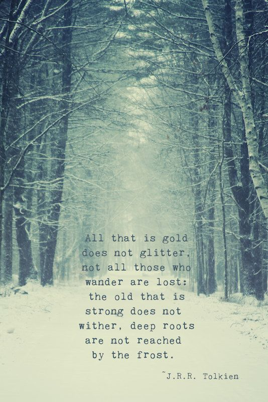 Not All Who Wander Quote Print, Tolkien Quote, Snowy Woods, Nature Woods Photo Print Winter Photo, Typewriter Quote, Nature Fine Art Print