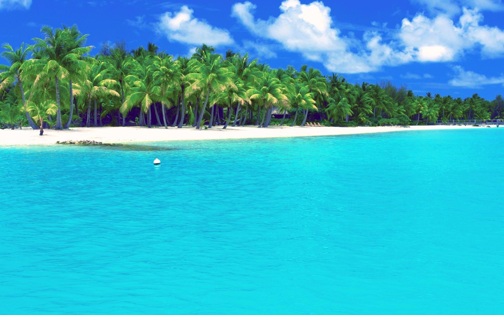 Bora Bora French Polynesia Beach Wallpaper Maldives Wallpaper Nature Wallpaper