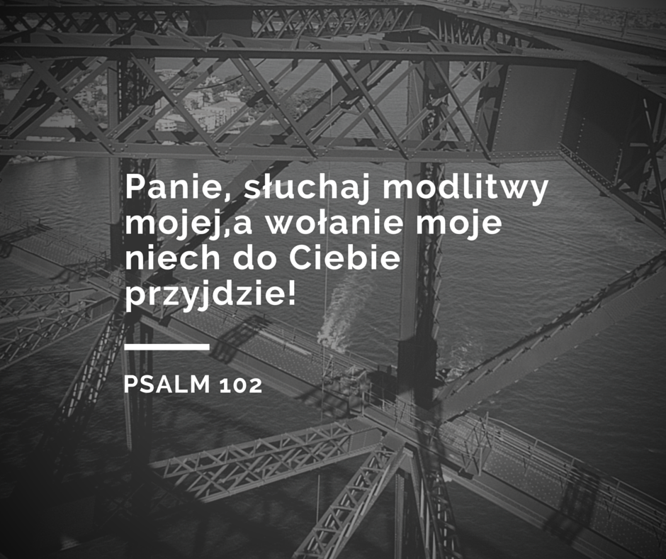 7 psalmów, które mogą stać się twoją codzienną modlitwą / Życie i wiara