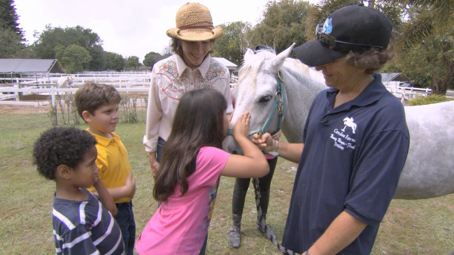 Kidvision Vpk Horse Farm Field Trip With Images