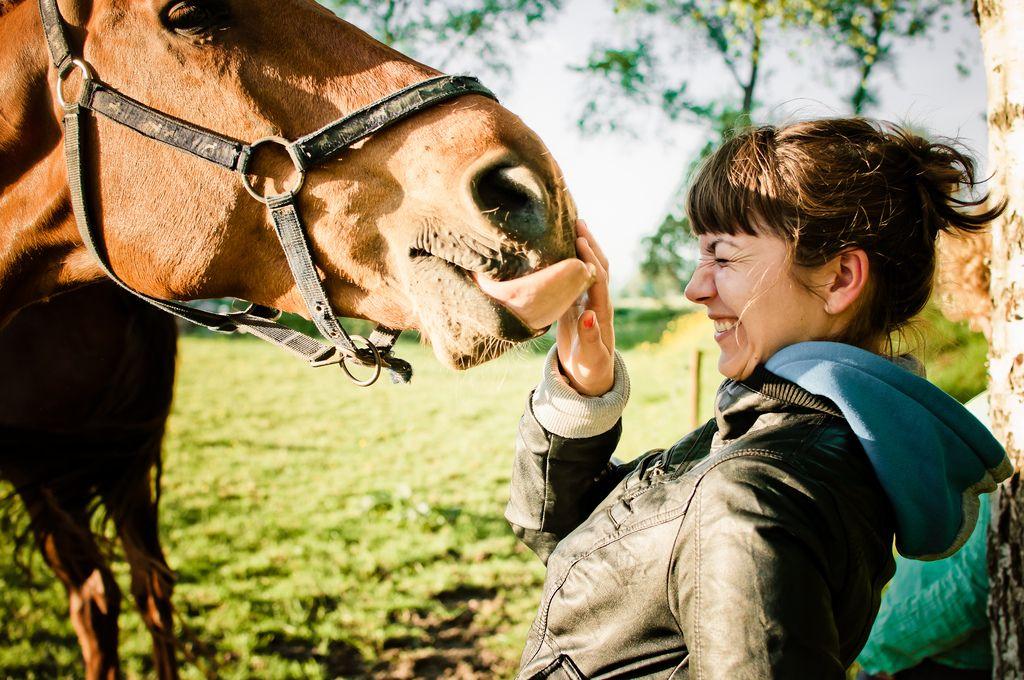 tickles! Kids strollers, Horses, Newborn stroller