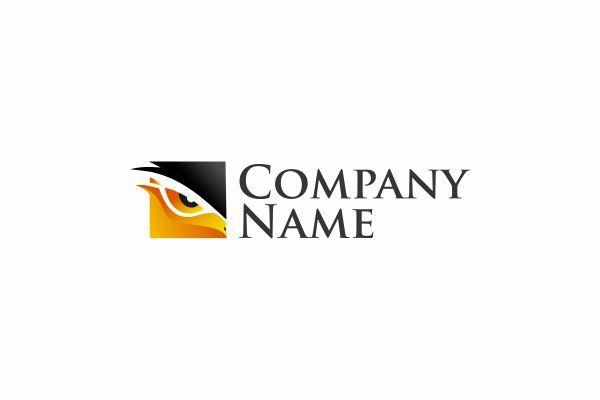 Logo for sale: Eagle Eye Logo