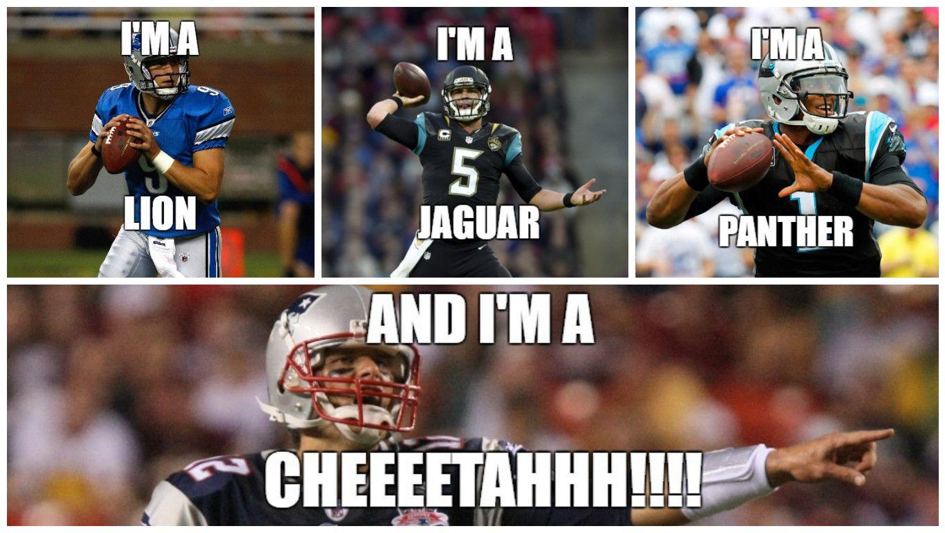 Nfl Meme Nfl Memes Football Memes Football Funny