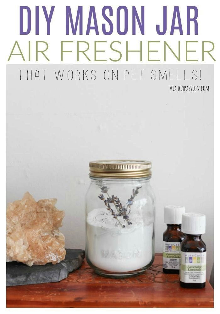 Simple DIY NonToxic Air Freshener  Pet Odor Eliminator Easy  Simple DIY NonToxic Air Freshener  Pet Odor Eliminator Easy  Simple DIY NonToxic Air Freshener  Pet Odor Eli...