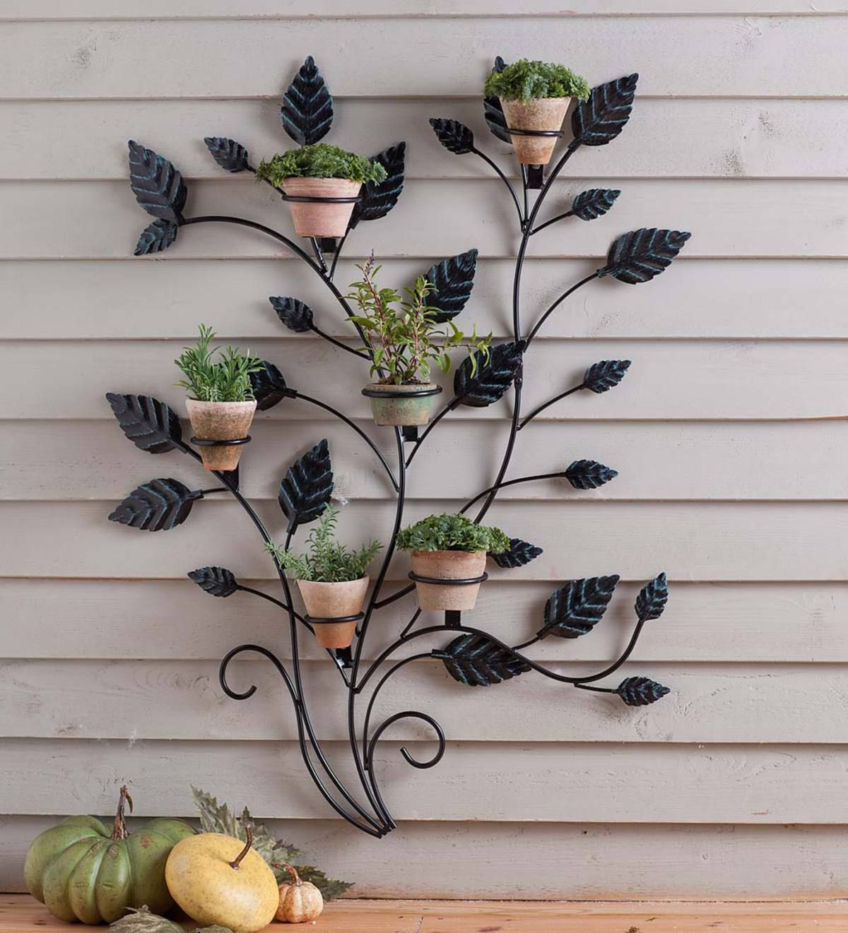 This Artful Vine Wall Trellis Is A Unique Way To Display