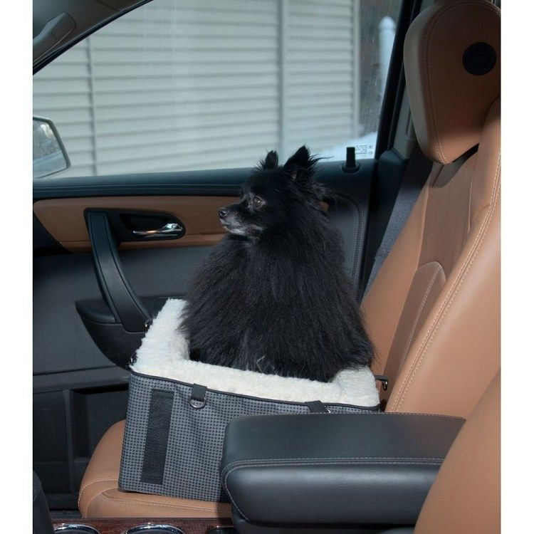 Account suspended pet booster seat pet car seat dog