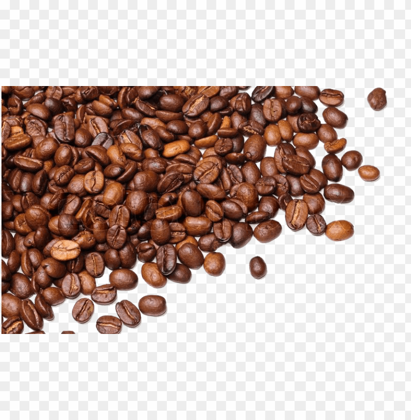 Download Coffee Beans Png Images Background Png Free Png Images Coffee Beans Coffee Pictures Coffee